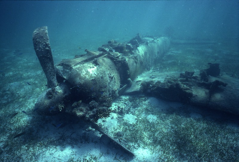 "This Japanese Mitsubishi A6M ""Zero"" was deliberately crashed into the sea after ""Shoho"" and ""Zuikaku"" were sunk during the Battle of the Coral Sea in 1942. (PHOTO CREDIT: Rod Pearce)"