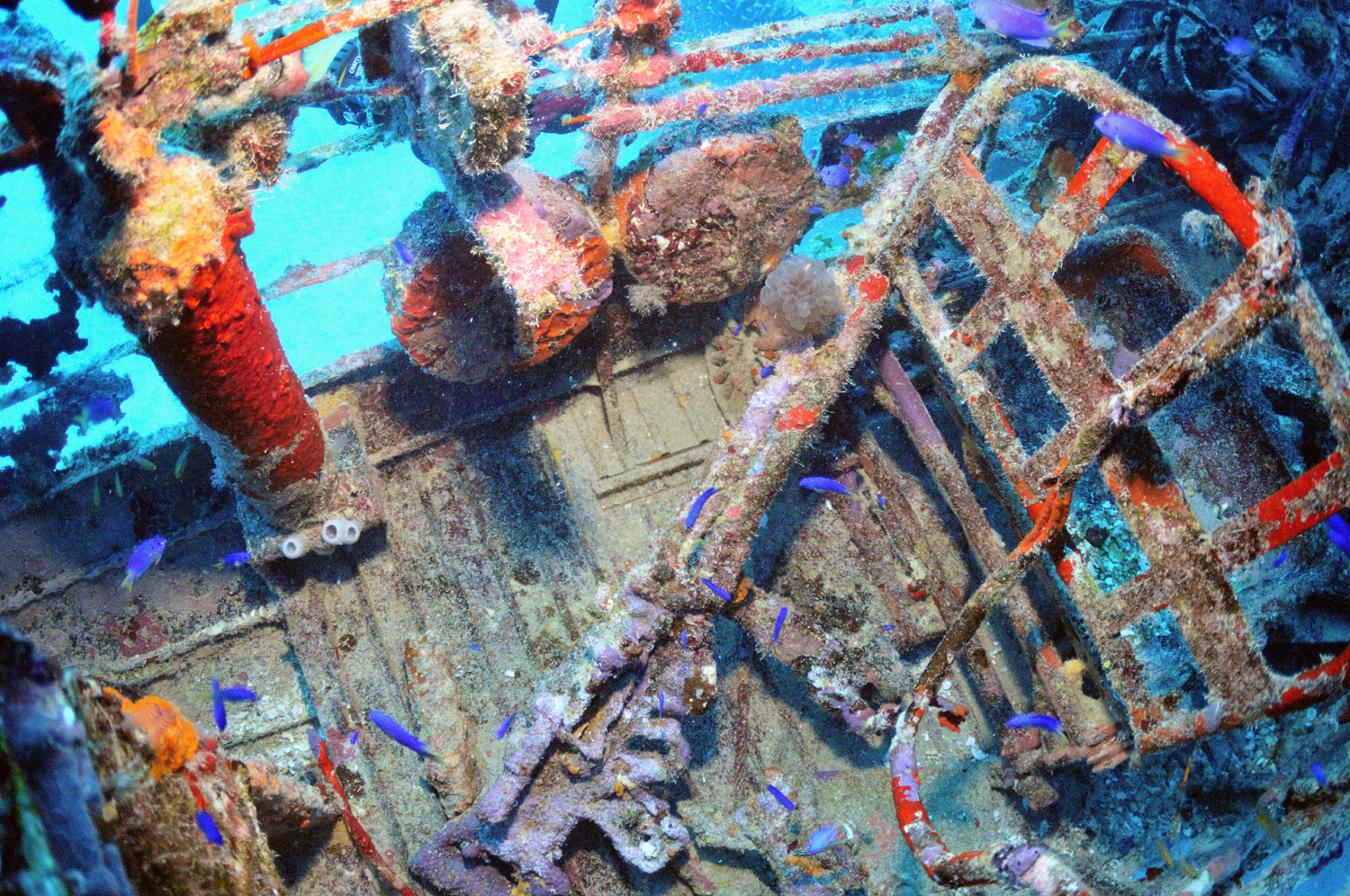 7.7mm machine gun and ammo drums in the rear cockpit of the Jake #2 wreck