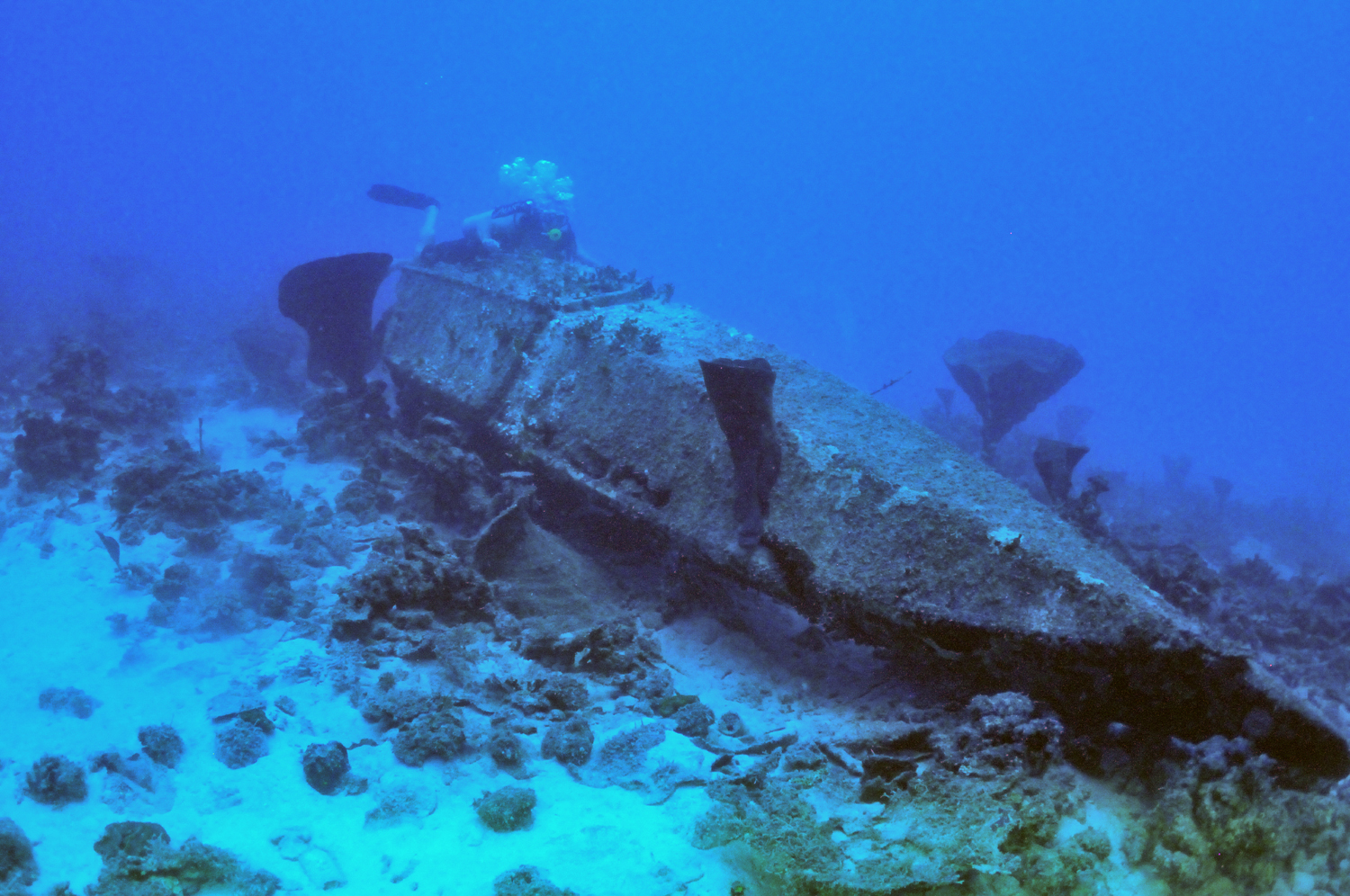 Float from the Jake #1 wreck