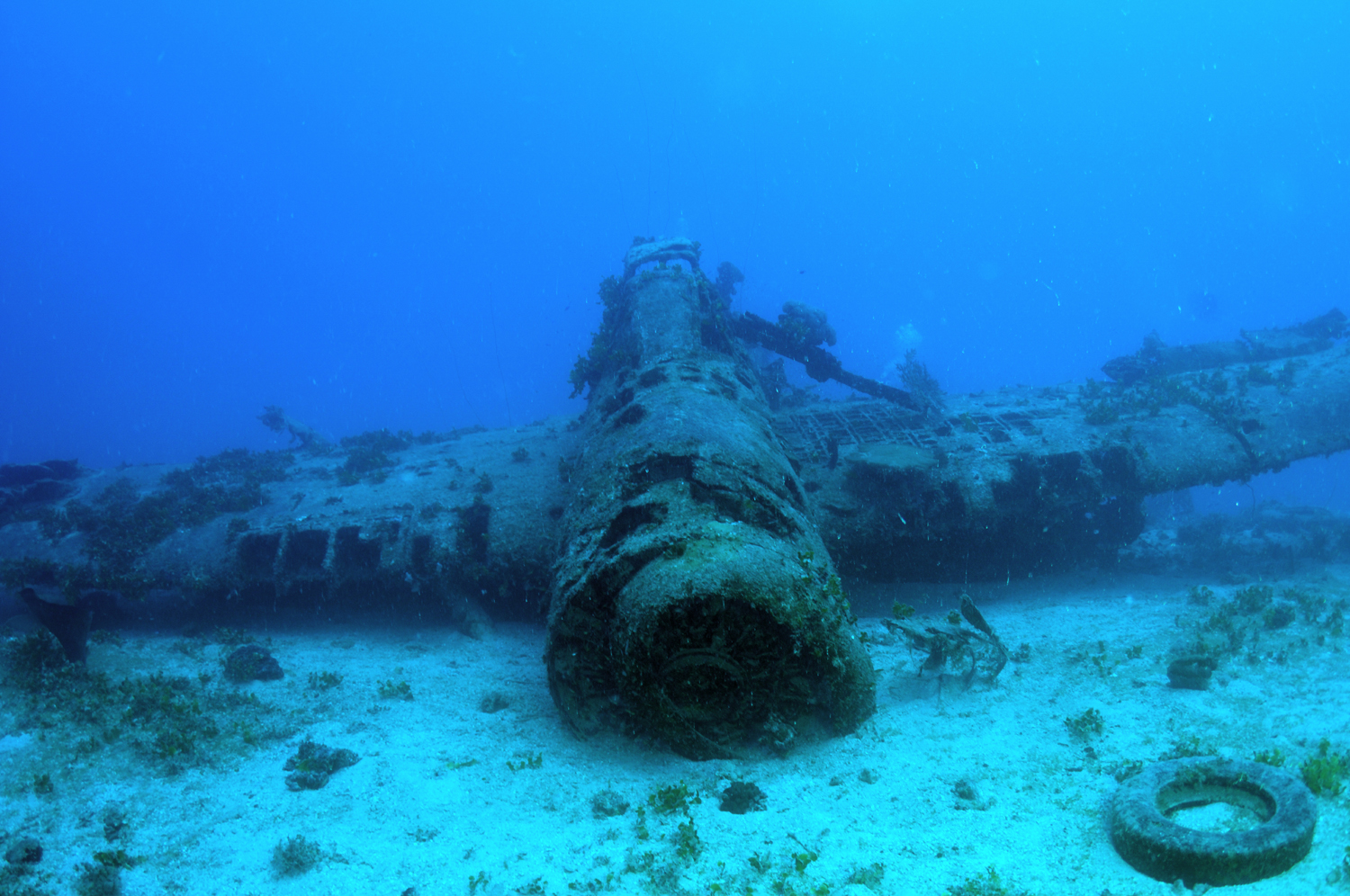 """The """"Jake"""" #2 wreck lying upside down on the seabed"""
