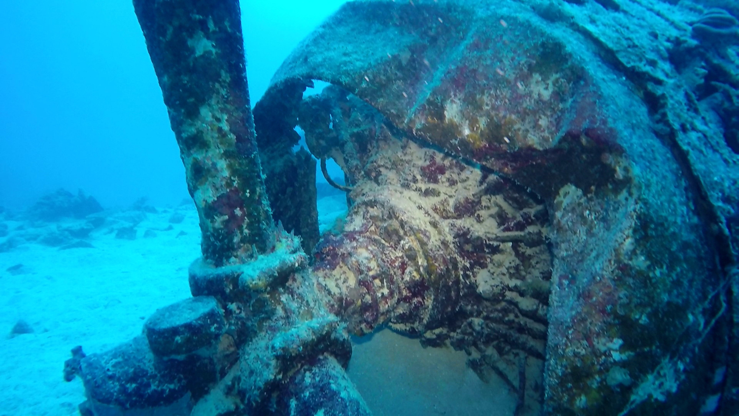 Prop and engine of the Jake #1 wreck