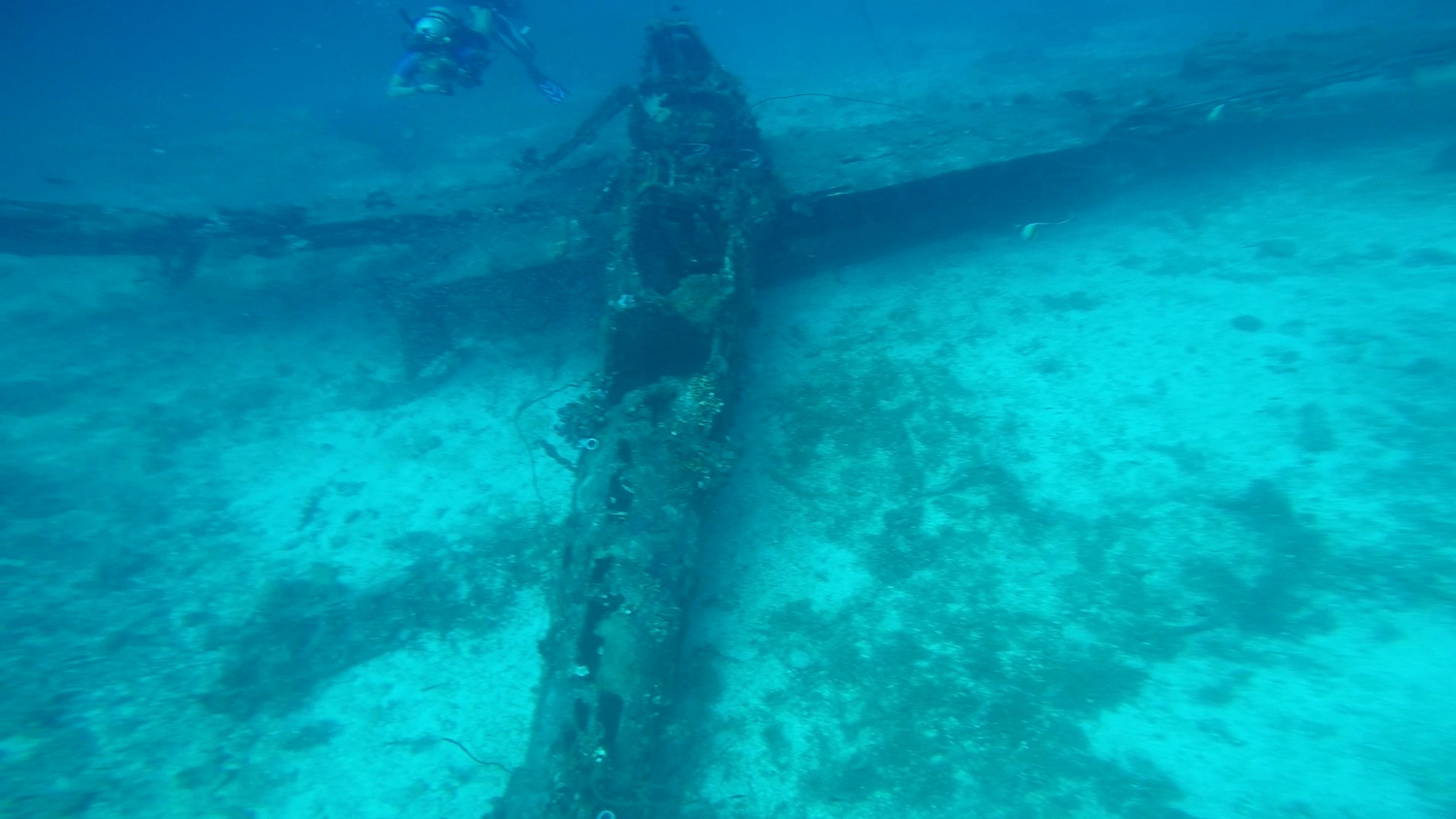 """The """"Jake"""" wreck offers a unique diving experience"""