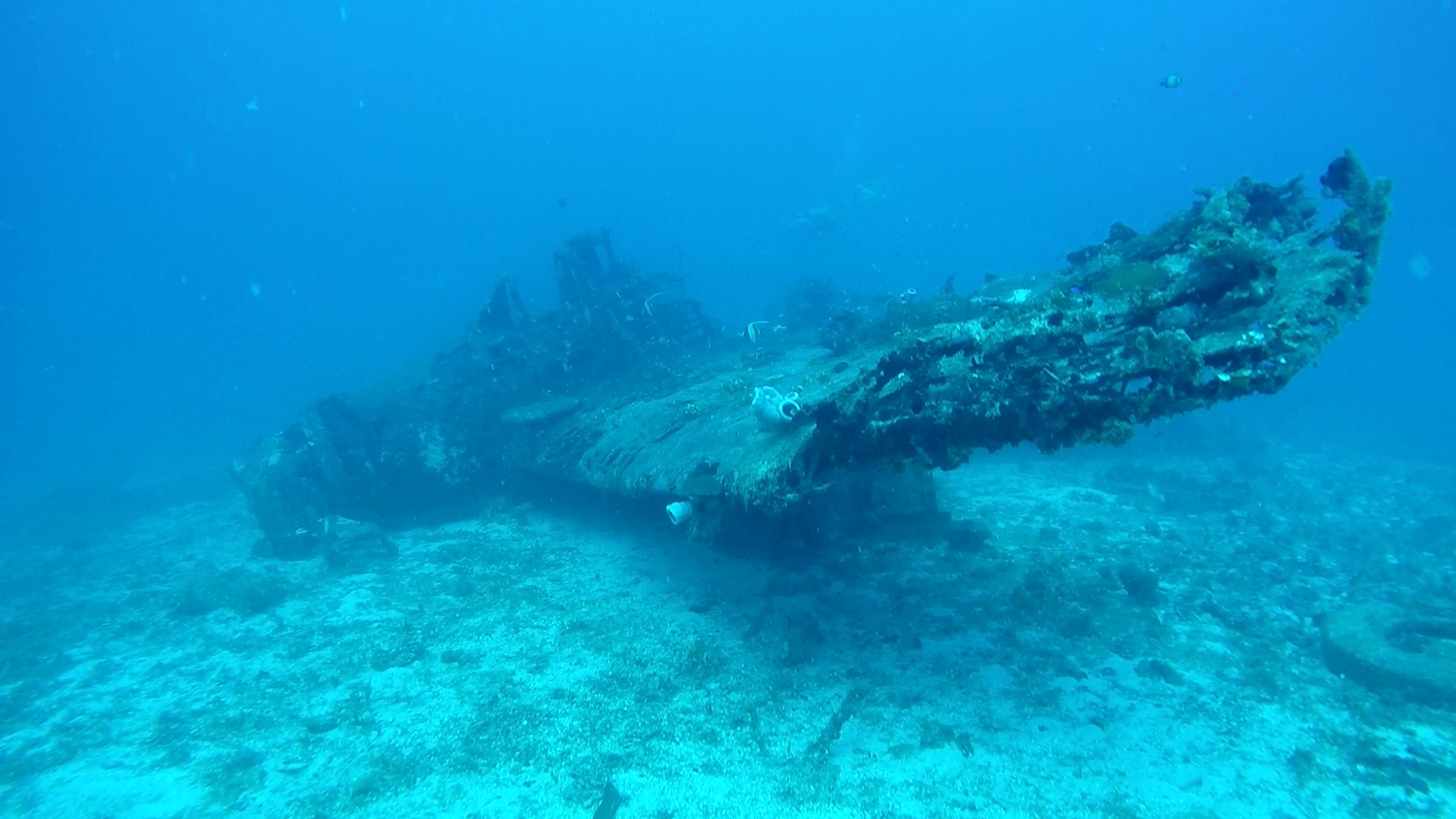 """Side view of the """"Jake"""" wreck"""