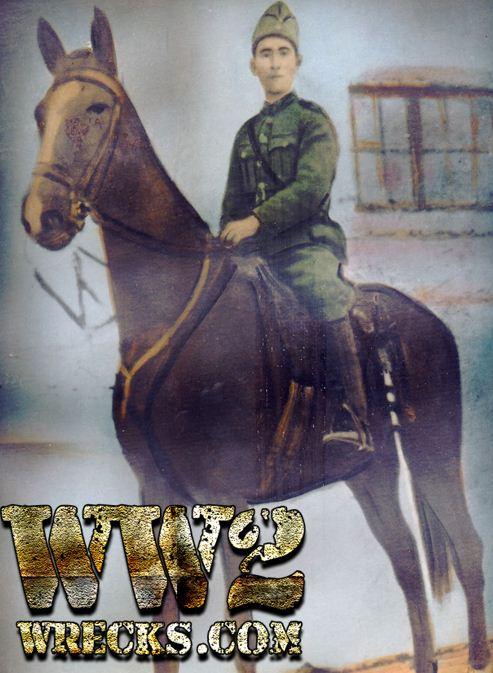 Από τα 125.000 μεταγωγικά κτήνη που είχαν επιταχθεί μόλις μερικές εκατοντάδες επέστρεψαν... Τα υπόλοιπα χάθηκαν στα βουνά της Αλβανίας. Ένα από αυτά, είναι το άλογο του στρατιώτη Βασίλη Λιανού από την Ολυμπία, το οποίο χάθηκε μαζί με τον αναβάτη του...