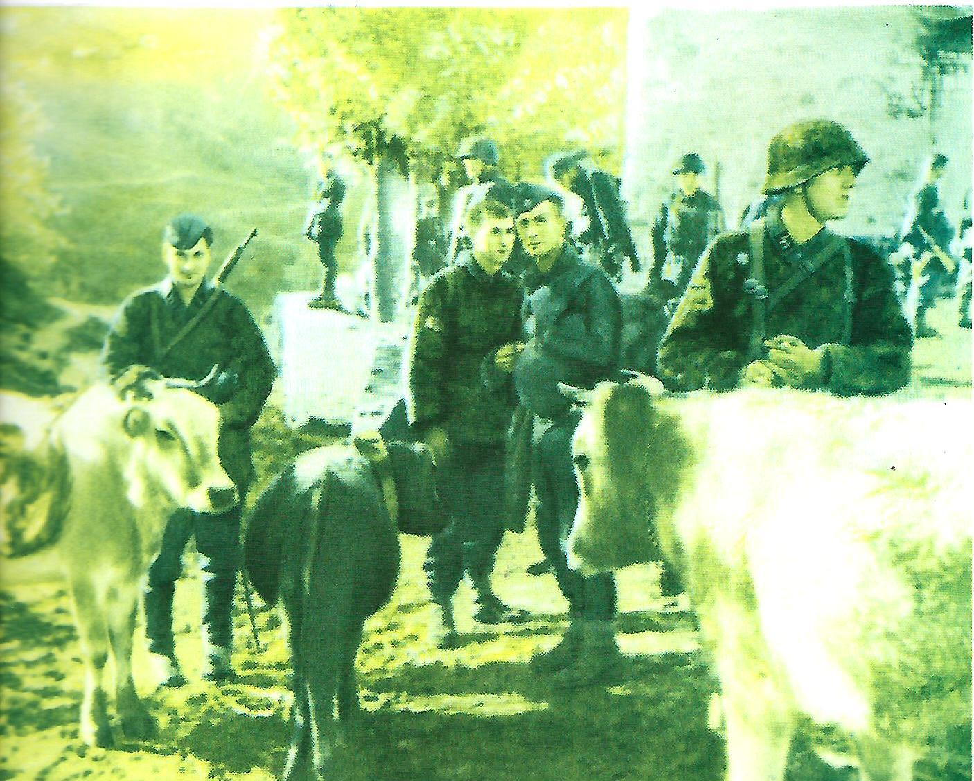 Πλιάτσικο-από-Γερμανούς-στρατιώτες-σε-κάποιο-χωριό-της-Θεσσαλίας.-Πηγή-Νίκος-Στουρνάρας-Μαγνησία-1941-44-Η-τραγωδία-της-κατοχής.