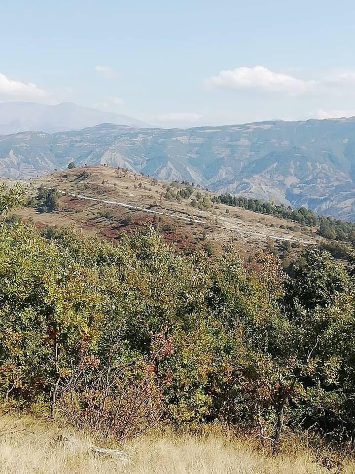 Υψωμα Μπουμπεσι (στηριγμα 731) θεατρο σκληροτατων συγκρούσεων.. Μαζι με 731 μνημονεύεται στο Μνημείο του Αγνωστου Στρατιωτου