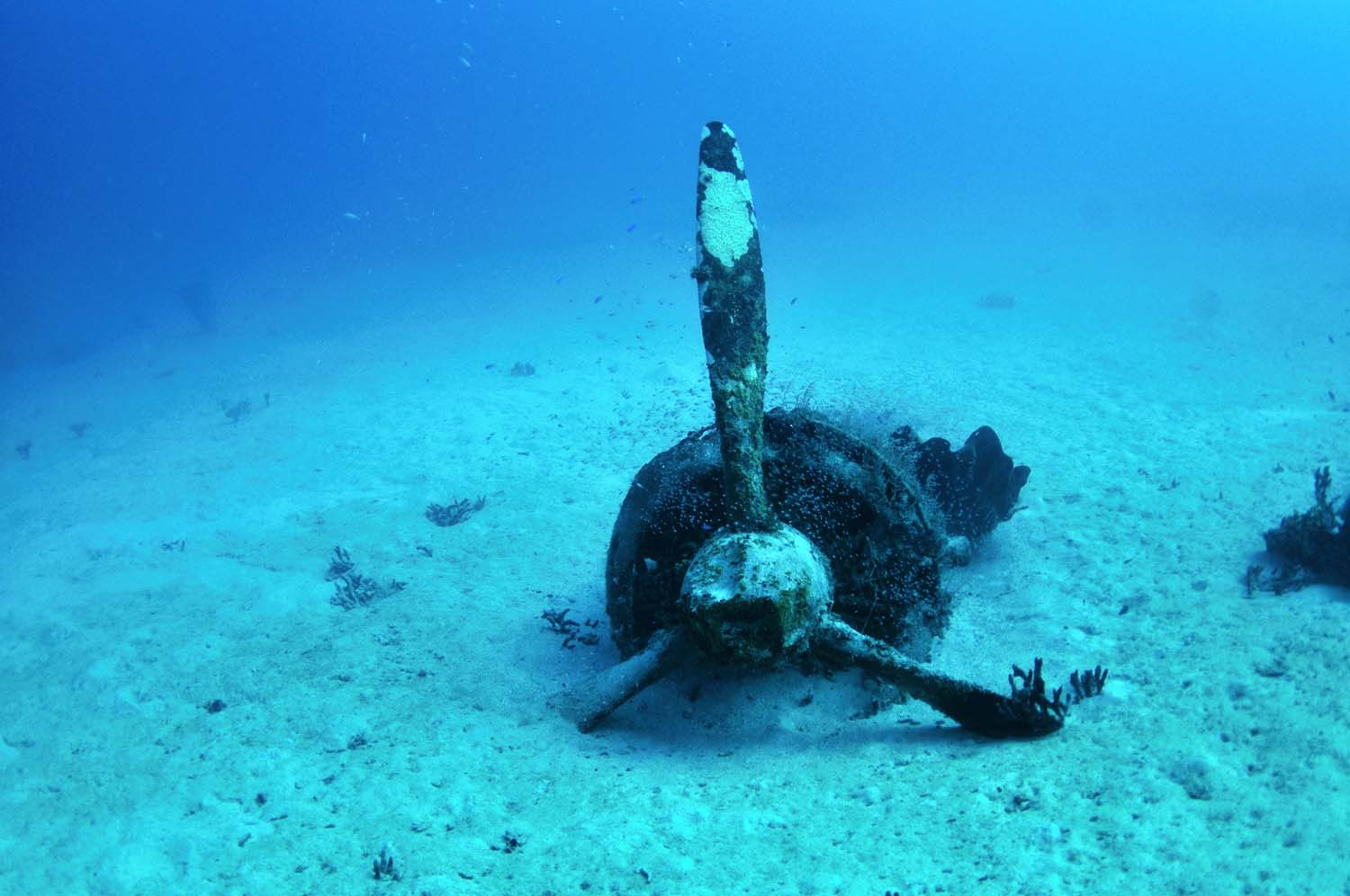 An engine on the seafloor reminds us of the once majestic