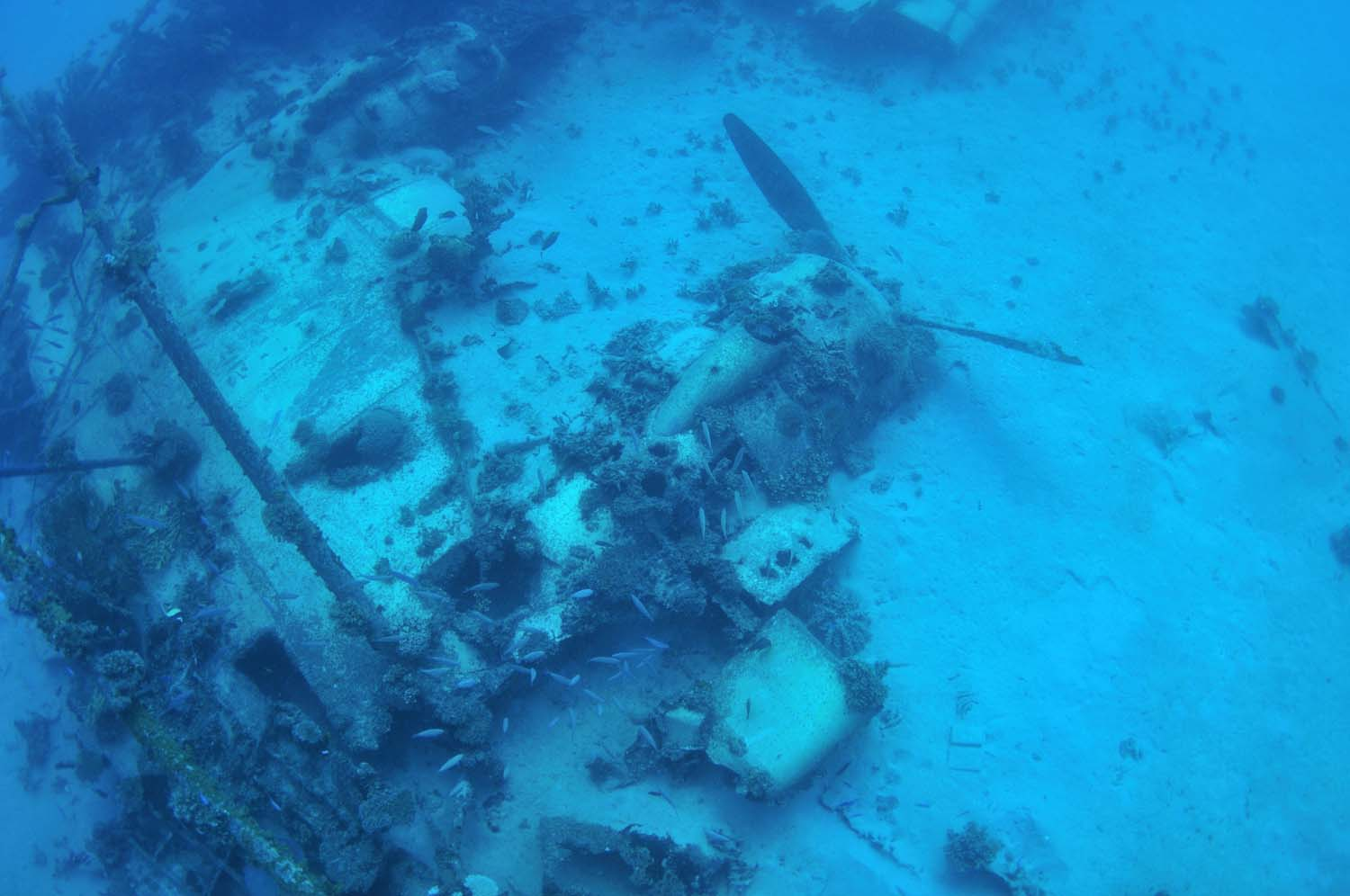 An engine lies on the seafloor