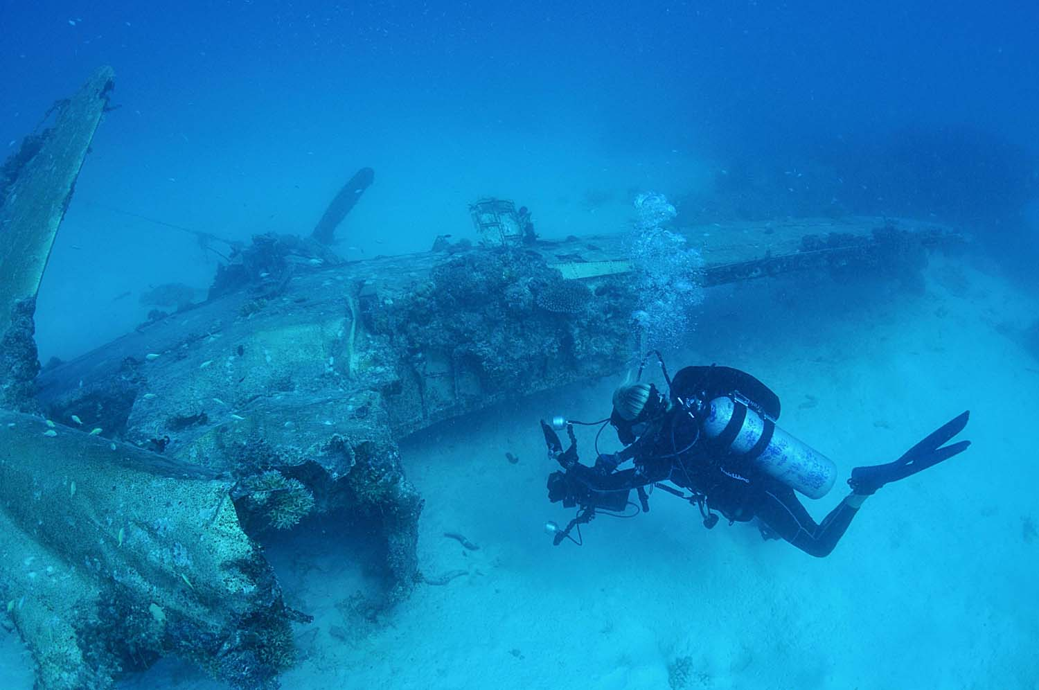 Divers hover around the wreck of a WW2 legend