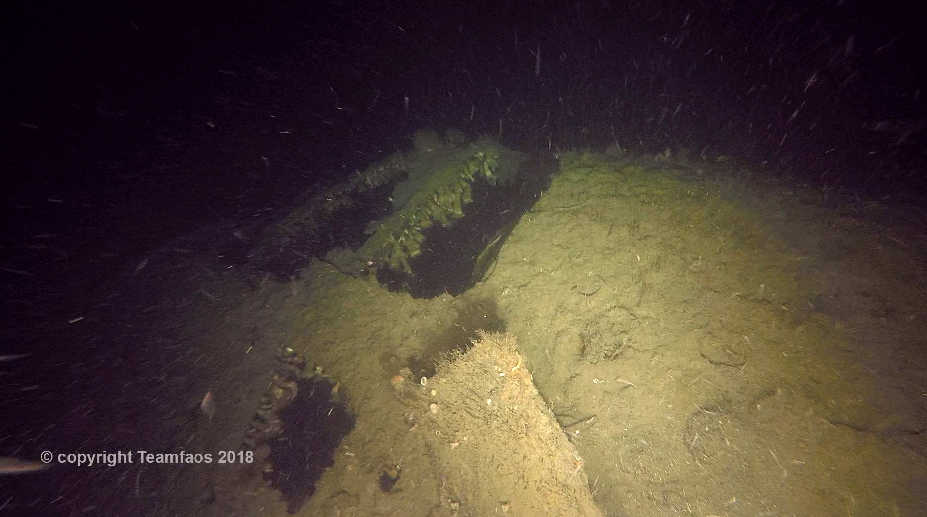 The WW2 wreck finally had its story told: The documentary