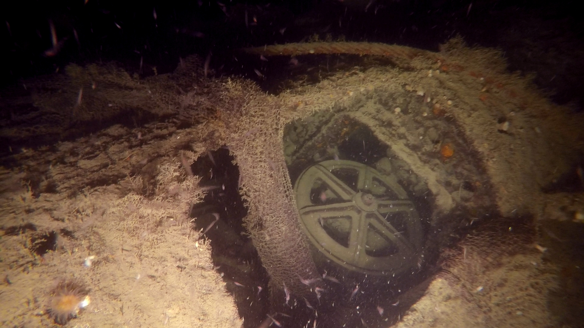 Every object of the WW2 wreck was once used by the crew. Now, these images pay tribute to their sacrifice, a lasting legacy to their struggle for the Allied cause.