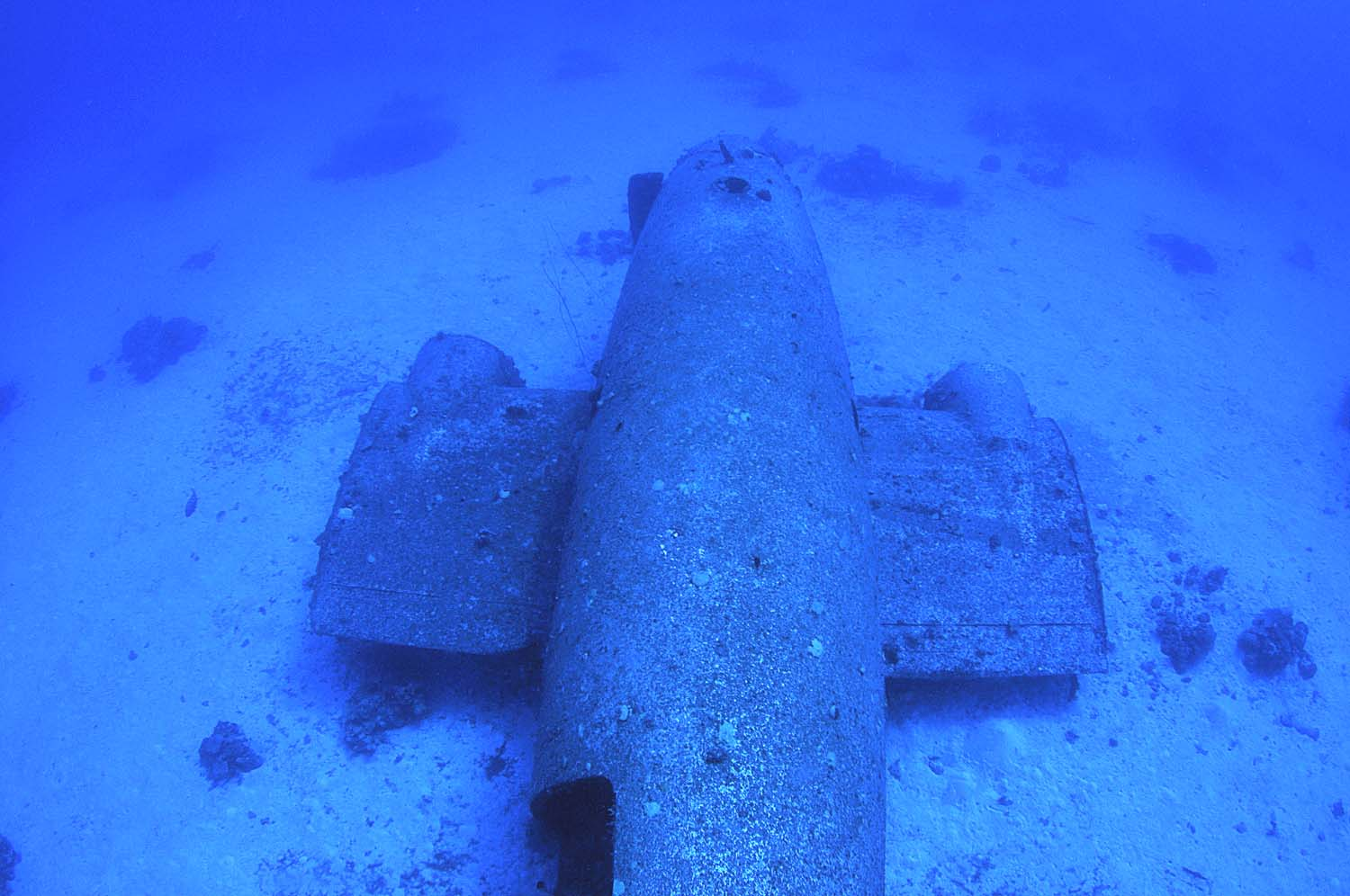 A view of the aircraft wreck's fuselage