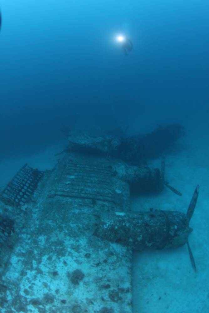 The wing and forward section of Gunga Din. (photo courtesy of Josh Vance/Kwajalein MIA Project)
