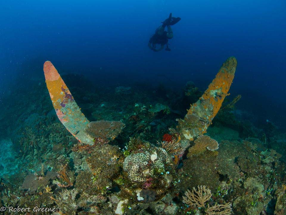 One of the propellers from the PB2Y-5R, BuNo 7075, encrusted with coral. (courtesy of Bob Greene/Kwajalein MIA Project)