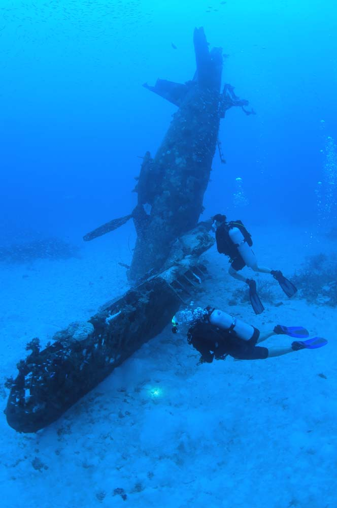 Scuba divers explore the wreck