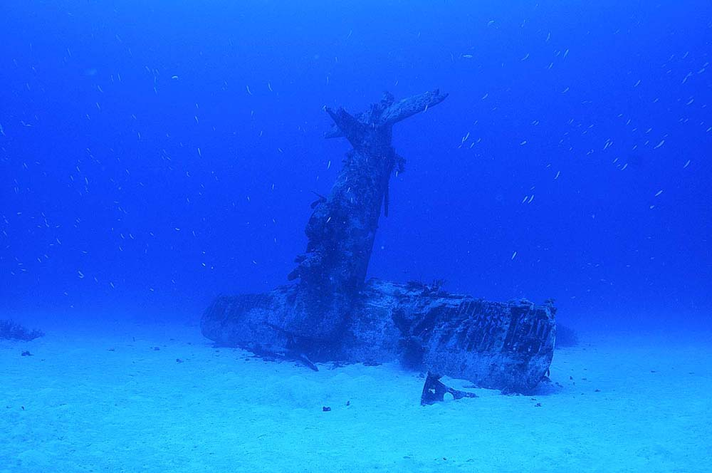The aircraft wreck sits nose down on the sandy seabed