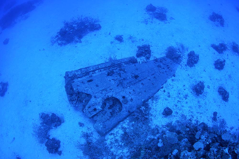 Another Avenger wing lying near the upside-down Avenger- this is likely one of the wings that has been confused by some divers as belonging to the R5C-1 'Commando' wreck, which is not far away from the upside-down Avenger.
