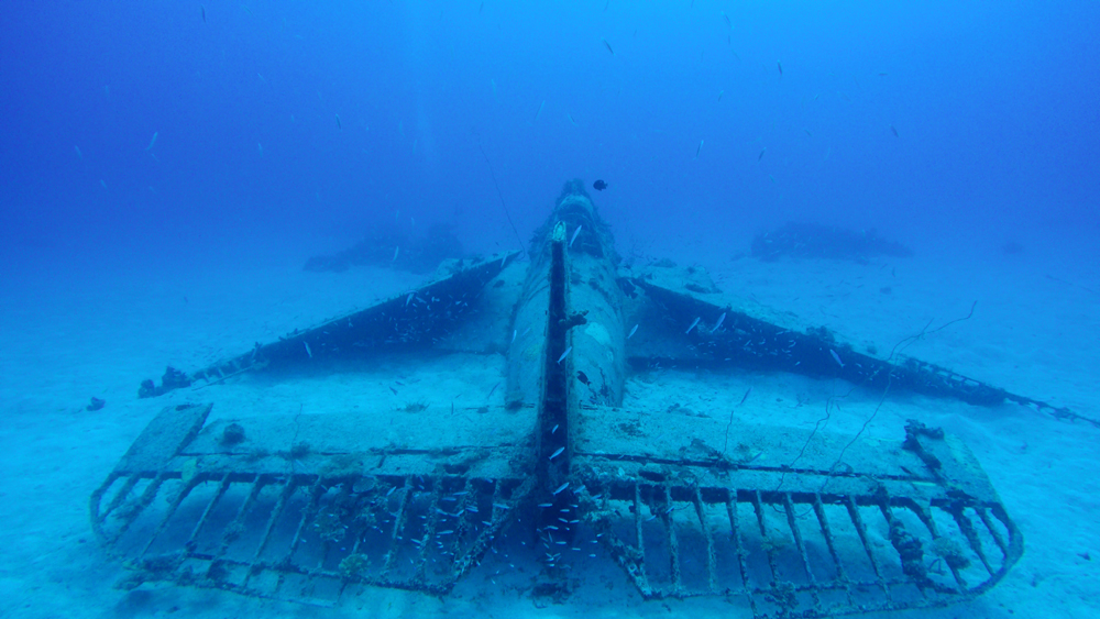Despite the fact that the fabric has deteriorated, this aircraft wreck is remarkably intact.