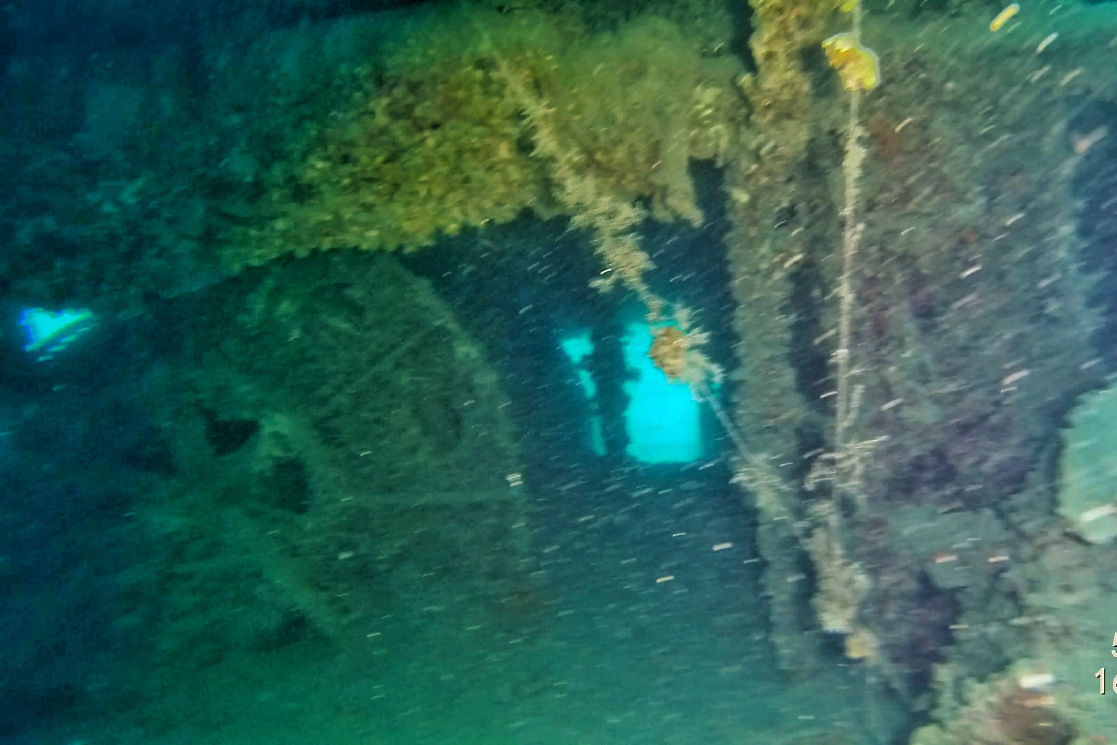 The wreck, located several years ago, is a popular diving site for experienced divers.