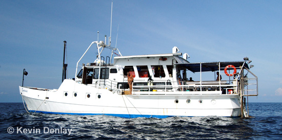 The dive vessels MV Empress, upon which much fun and merriment was had, and off which many a historically important shipwreck discovery was made
