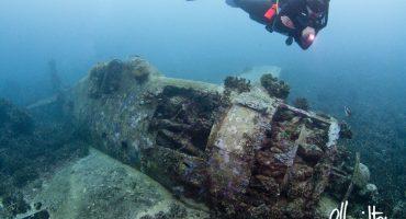 """Grumman F6F-3 Hellcat, """"Betsy II; downed Jan 29 1943 - Gizo, Solomon Islands."""