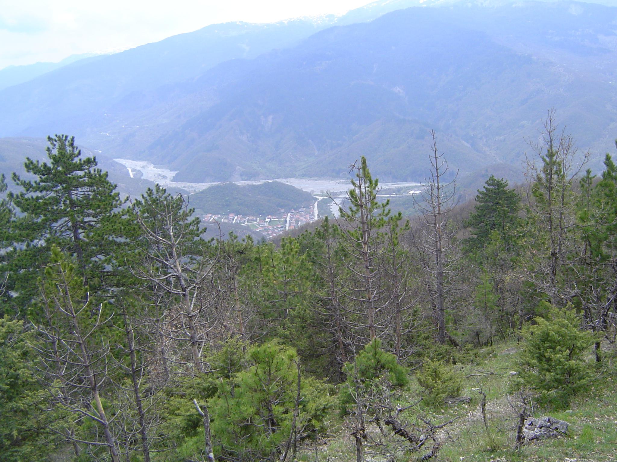 ΓΡΑΜΜΟΣ_2011 252