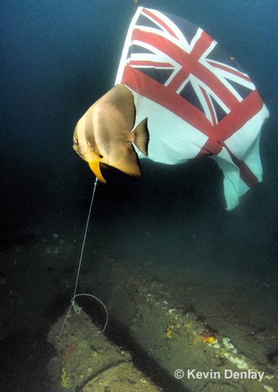 The Royal Navy Ensign, donated by the crew of D89, which was left flying over the wreck of HMS Exeter in 2008