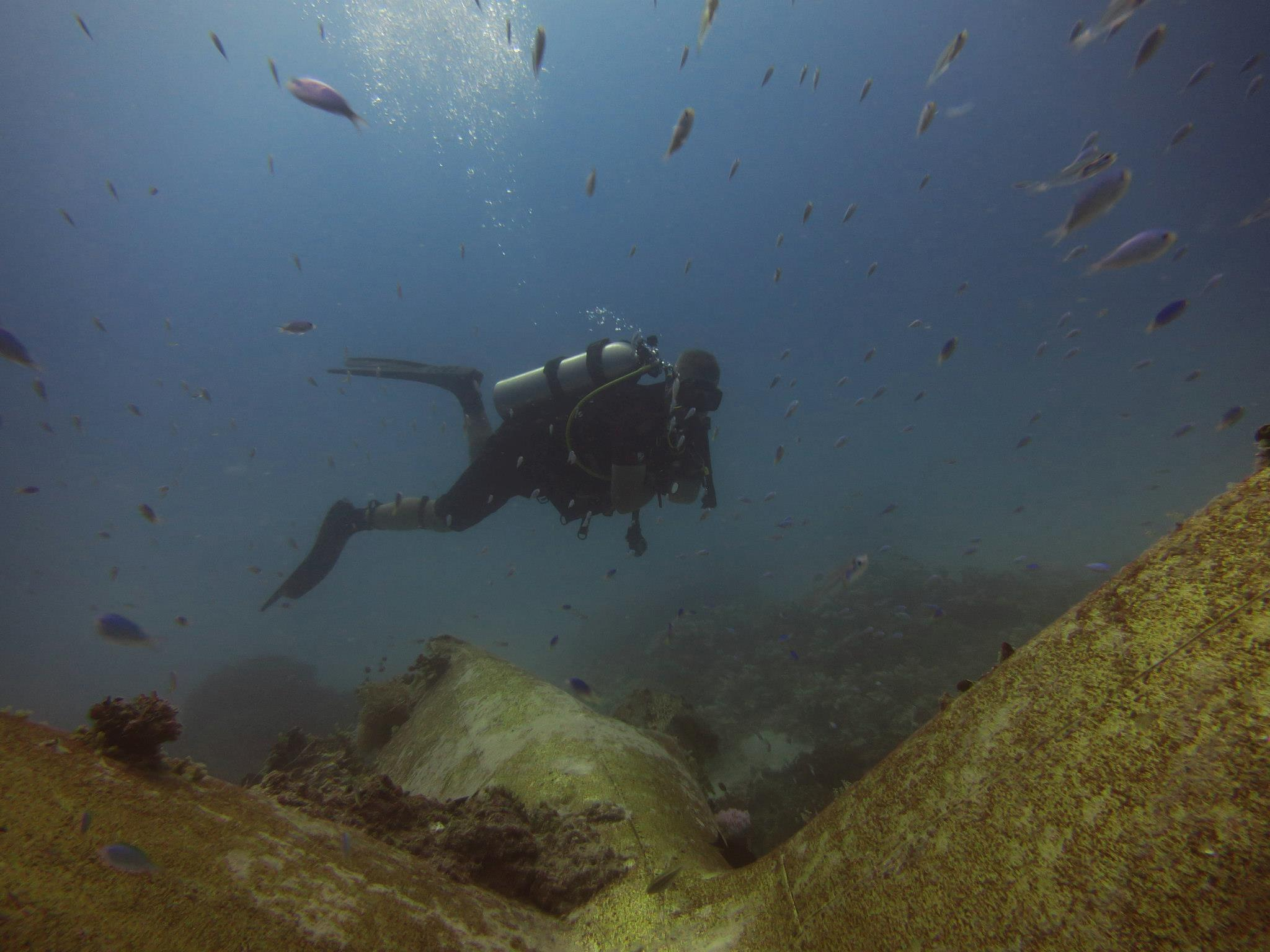 Dan Farnham examing a Japanese Zero fighter aircraft wreck in Kwajalein