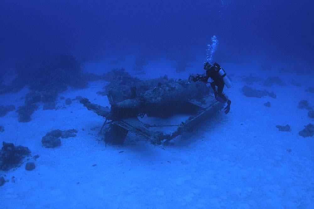 A scuba diver examines the Wildcat wreck
