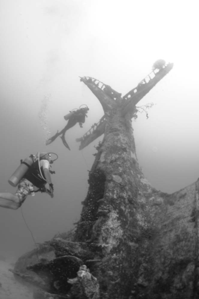 Divers hover around a nose down Dauntless.