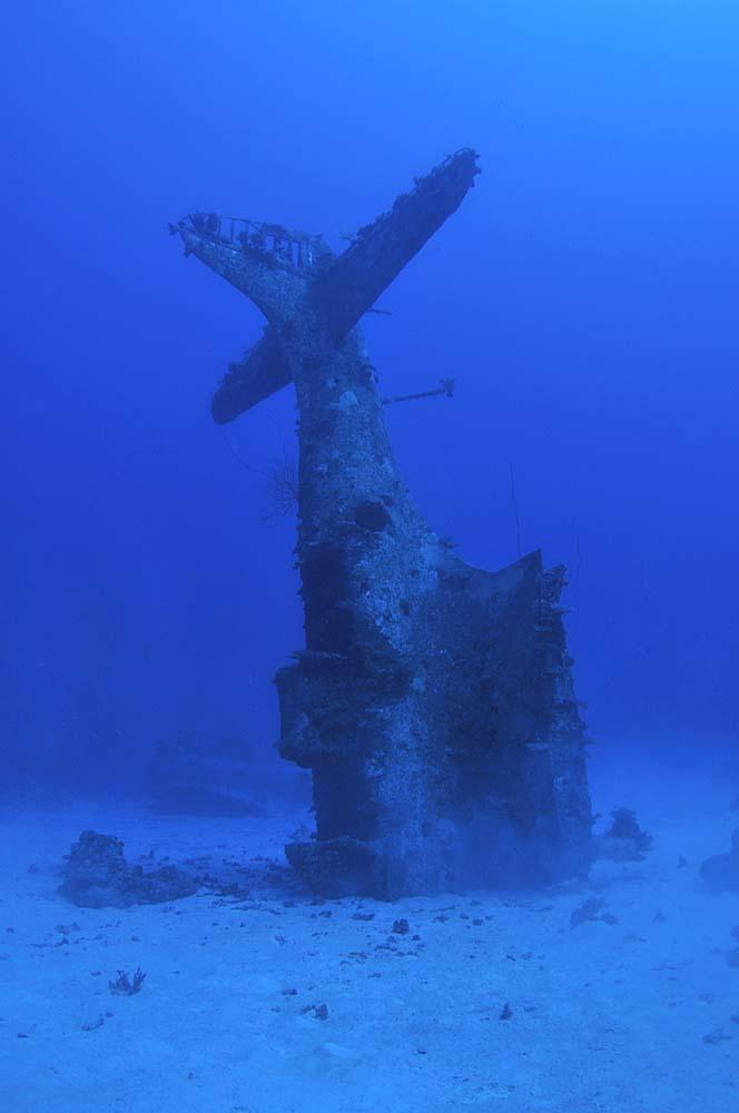 Dumped in Kwajalein laggon, several SBD's landed nose down on the sandy seabed.